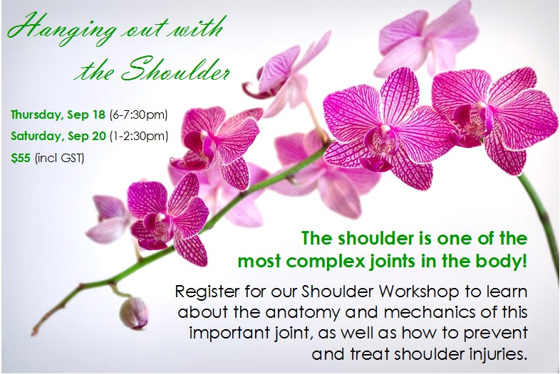 Shoulder Workshop Fall 2014